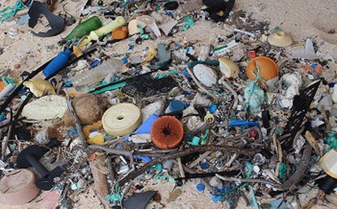 Hòn đảo ở Nam Thái Bình Dương này là nơi bị ô nhiễm rác thải nhựa nặng nhất trên thế giới