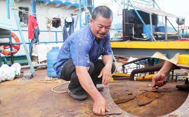 Đại diện hãng Mitsubishi: 8 máy trên tàu Cty Nam Triệu đóng không phải hàng chính hãng