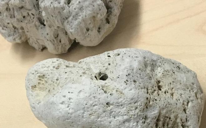 Bí ẩn loại đá có khả năng nổi lềnh bềnh trên mặt nước và lý giải của các nhà khoa học
