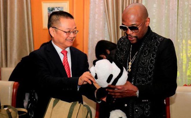 Mayweather trả 330 triệu đồng để nhận nuôi gấu trúc Trung Quốc