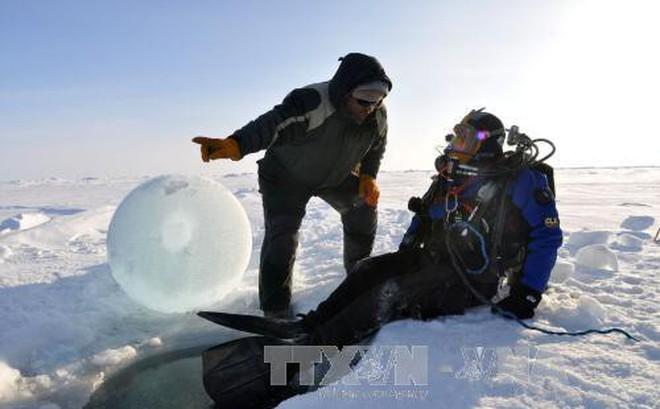 Cảnh báo khí hậu Bắc Cực biến đổi sang nền nhiệt mới