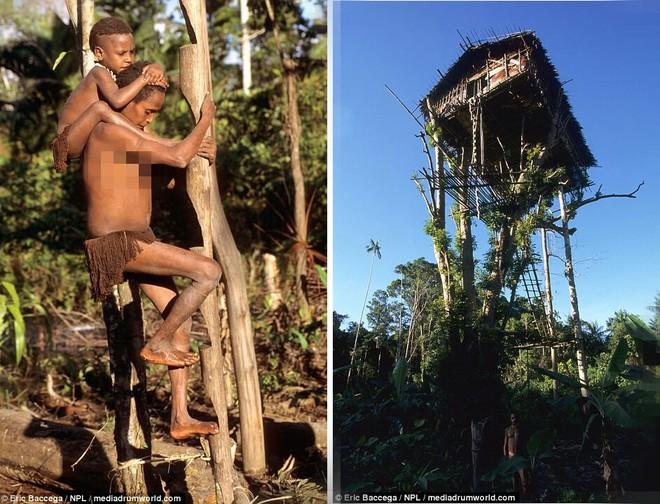 Cận cảnh bộ lạc sống trên cây, cao tới 50m và tách biệt với loài người ngay tại Đông Nam Á - Ảnh 6.