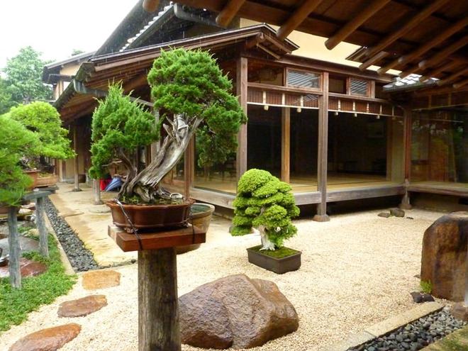 Bậc thầy bonsai Nhật và bí mật của vườn cảnh trăm tuổi được đại gia thế giới ước thèm - Ảnh 10.