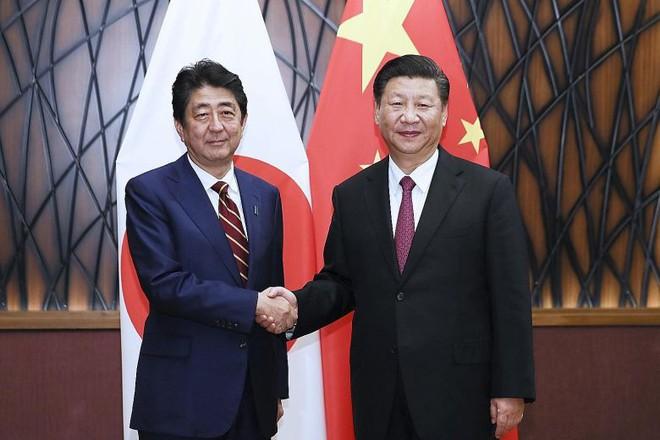 Nụ cười ẩn ý của Chủ tịch Tập Cận Bình trong cuộc đối thoại với Thủ tướng Abe tại APEC - Ảnh 1.