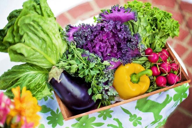 Thực phẩm hữu cơ - thị trường hứa hẹn có thêm nhiều triệu phú - Ảnh 2.