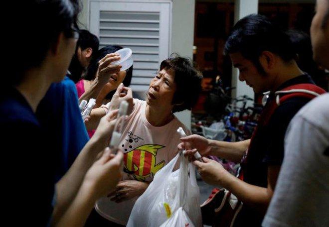 Săn kiến - thú vui mới nổi của người Singapore - Ảnh 9.