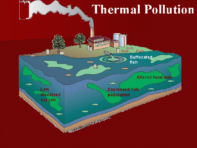 Đây mới là loại ô nhiễm đáng sợ, đang âm thầm khiến chúng ta trả giá hàng ngày - Ảnh 1.