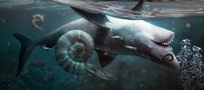 Bí ẩn cuộc đại tuyệt chủng hủy diệt 96% sự sống sinh vật biển cuối cùng đã có lời giải? - Ảnh 1.
