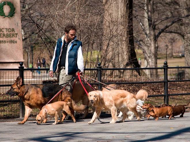 Mặc đồ đỏ, chơi với trẻ em, nuôi chó - còn điều gì đàn ông chưa làm để hấp dẫn phái đẹp? - Ảnh 6.