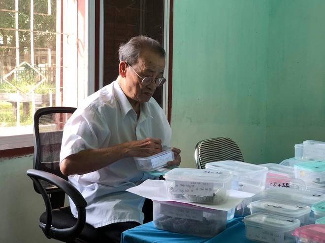 Phát hiện hơn 200 đồng tiền xu cổ quý hiếm ở Hà Tĩnh - Ảnh 1.