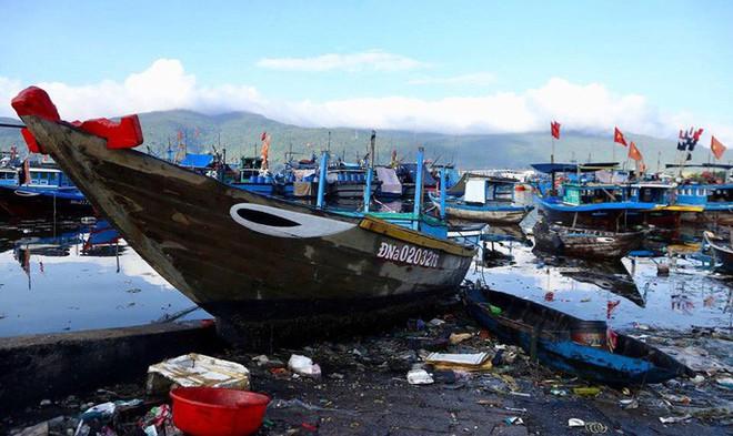 Cảng cá lớn nhất miền Trung nước đen ngòm, bốc mùi hôi thối - Ảnh 1.