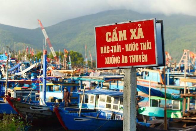 Cảng cá lớn nhất miền Trung nước đen ngòm, bốc mùi hôi thối - Ảnh 5.