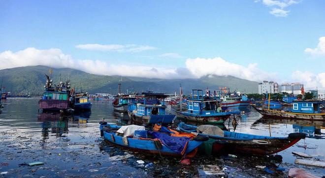 Cảng cá lớn nhất miền Trung nước đen ngòm, bốc mùi hôi thối - Ảnh 11.