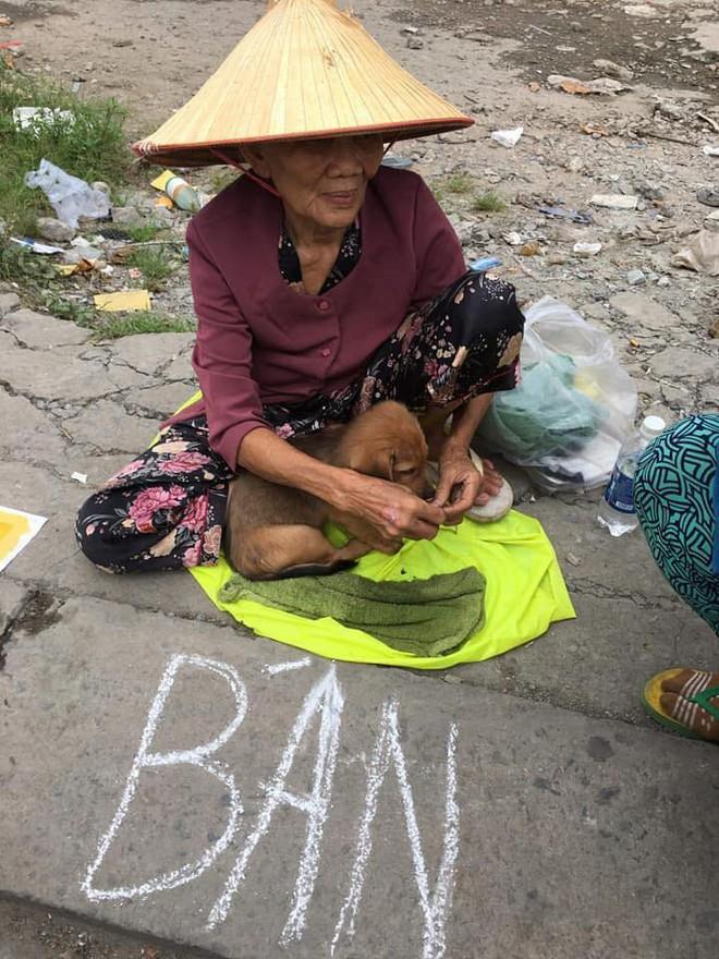 Nụ hôn từ biệt của cụ già và chú chó nhỏ: Câu chuyện không ai cầm được nước mắt giữa phố Sài Gòn - Ảnh 1.