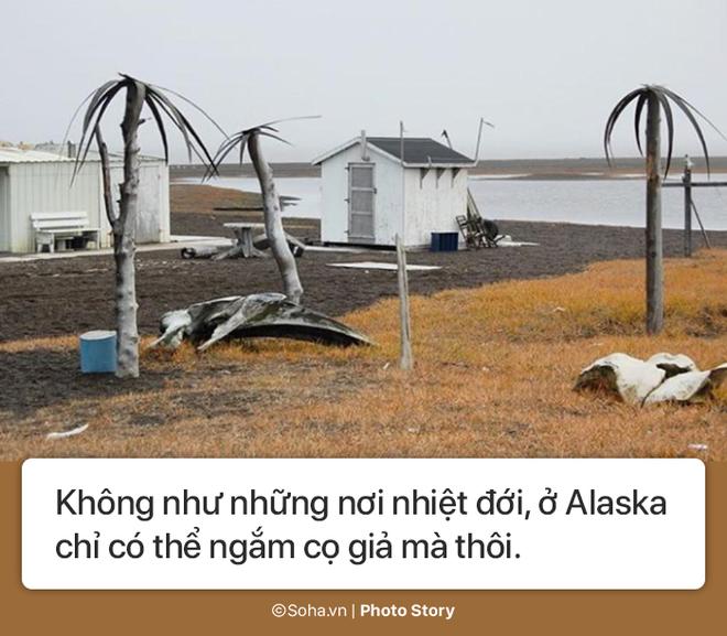 [Photo Story] - Những điều kỳ lạ chỉ có ở Alaska, điều số 5 không dành cho người yếu tim - Ảnh 6.