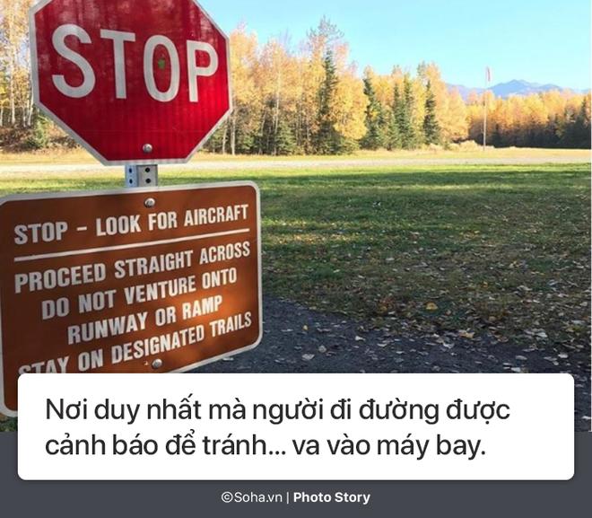 [Photo Story] - Những điều kỳ lạ chỉ có ở Alaska, điều số 5 không dành cho người yếu tim - Ảnh 7.