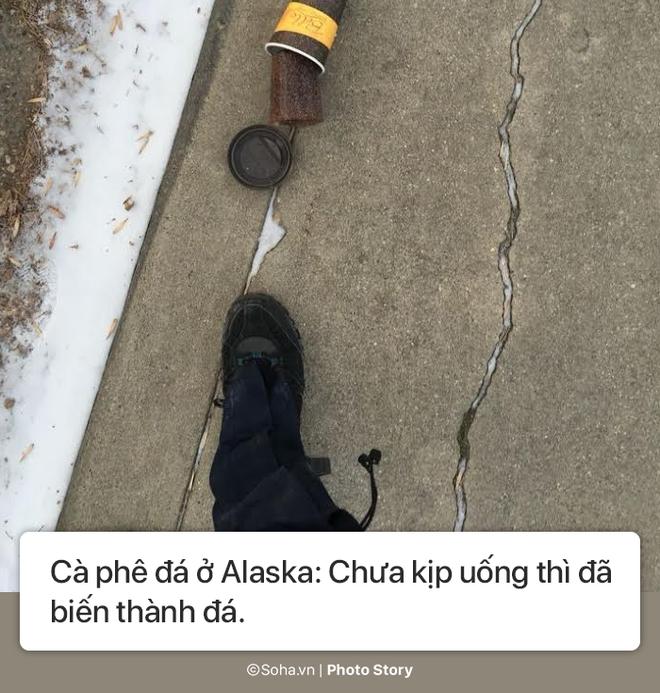[Photo Story] - Những điều kỳ lạ chỉ có ở Alaska, điều số 5 không dành cho người yếu tim - Ảnh 8.