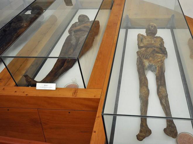 Bí ẩn những thi thể chưa qua ướp xác nhưng lại không hề phân hủy suốt hàng trăm năm - Ảnh 1.