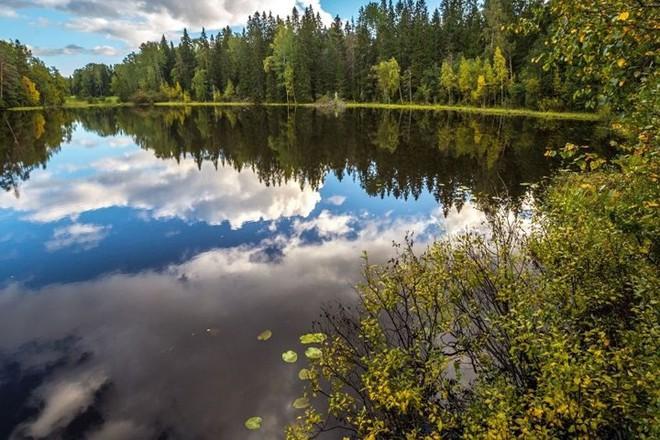 Tháng 10 về, ngắm vẻ đẹp mê ly của mùa thu nước Nga - Ảnh 5.