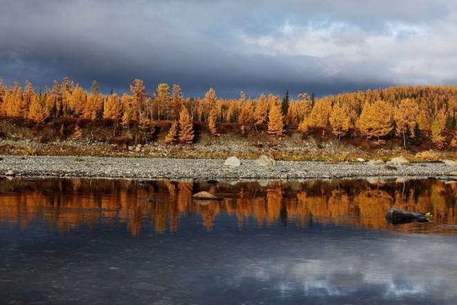 Tháng 10 về, ngắm vẻ đẹp mê ly của mùa thu nước Nga - Ảnh 7.