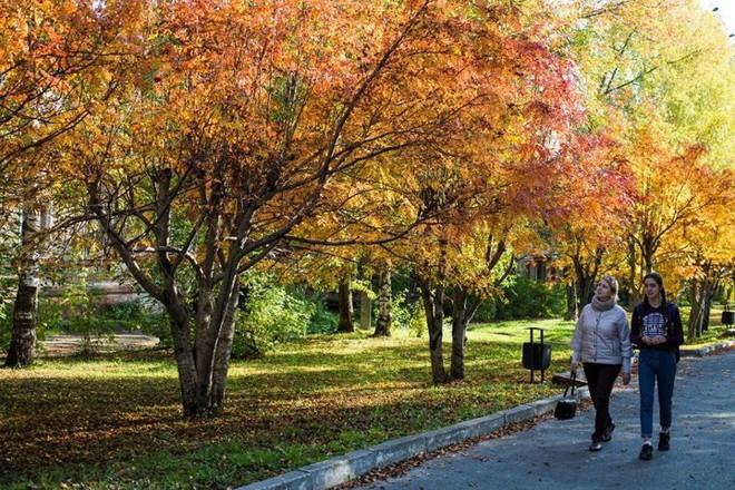 Tháng 10 về, ngắm vẻ đẹp mê ly của mùa thu nước Nga - Ảnh 10.