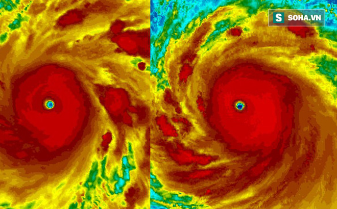 """Thái Bình Dương xuất hiện 2 siêu bão """"quái vật"""": Nhật Bản lại oằn mình chống chọi bão mới"""