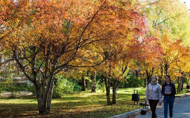 Tháng 10 về, ngắm vẻ đẹp mê ly của mùa thu nước Nga