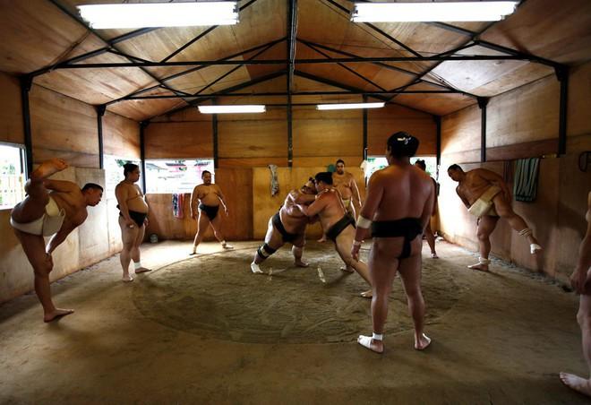 Gian nan vất vả đằng sau ánh hào quang của các võ sĩ Sumo - môn võ được kính trọng bậc nhất tại Nhật Bản - Ảnh 5.