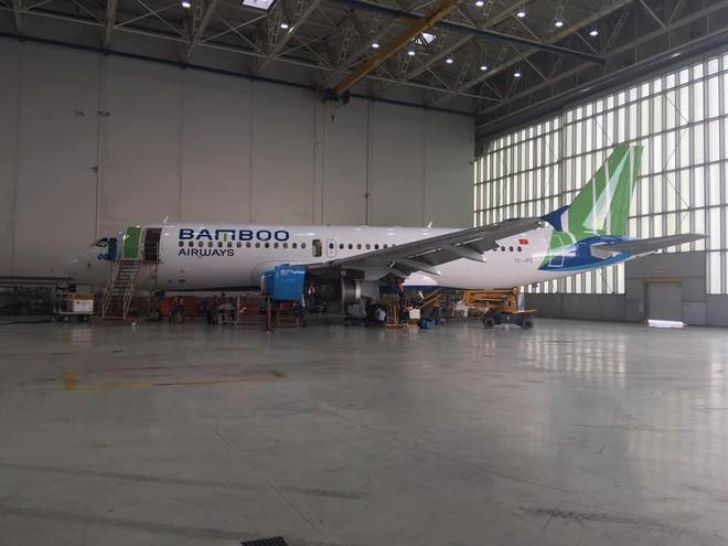 Lộ diện hình ảnh máy bay của Bamboo Airways - Ảnh 2.