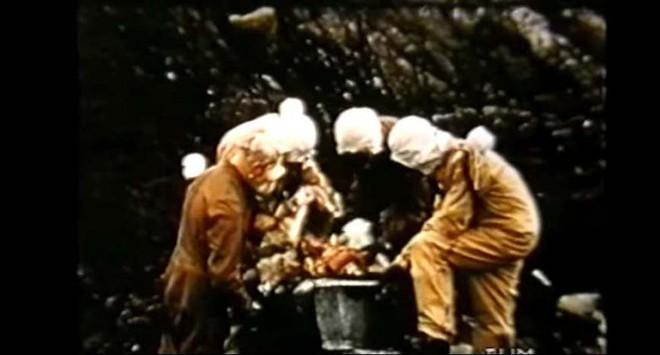 Sau gần 40 năm chìm trong bóng tối, bí mật khủng khiếp về đảo chết ở Anh bị phanh phui - Ảnh 4.