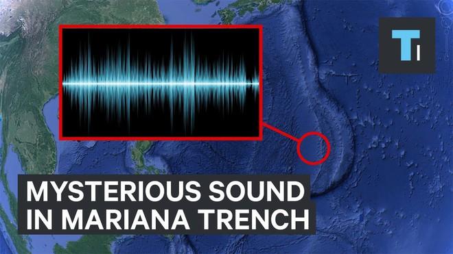 Những thứ kì lạ đến không tưởng mà người ta tìm thấy dưới đáy đại dương (P2) - Ảnh 4.