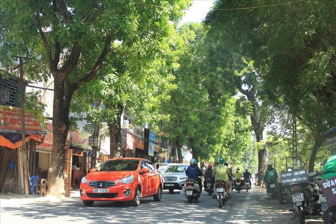 Toàn cảnh tuyến đường 2,2km đắt nhất hành tinh ở Thủ đô - Ảnh 10.