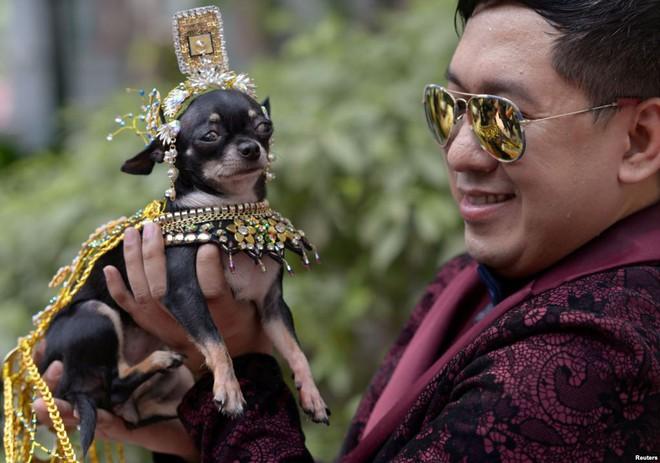 """24h qua ảnh: Vạn Lý Trường Thành """"thất thủ"""" trong dịp nghỉ lễ ở Trung Quốc - Ảnh 9."""
