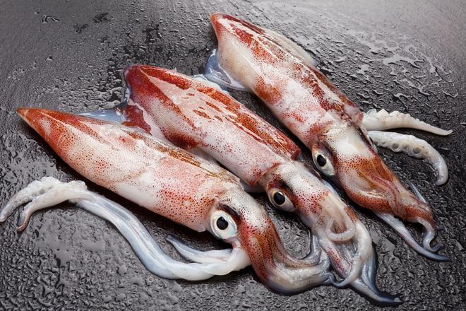6 điều kiêng kỵ khi ăn mực: Những sai lầm phổ biến gây bệnh nguy hiểm có thể bạn chưa biết - Ảnh 2.