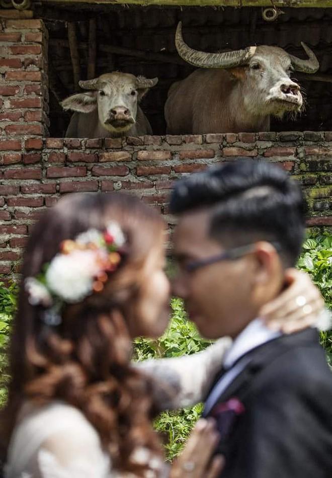 Loạt ảnh cưới tệ hại như được chụp bởi người yêu cũ được dân mạng chia sẻ rần rần - Ảnh 1.