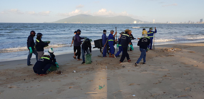 Cá chết trắng chưa rõ nguyên nhân dọc bờ biển Đà Nẵng - Ảnh 6.