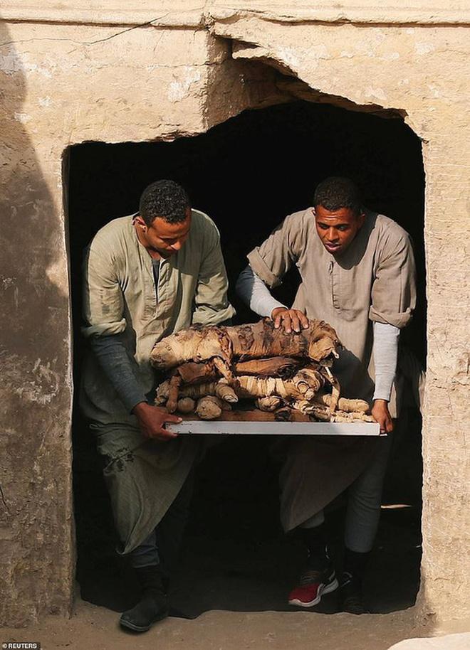 Phát hiện mẻ xác ướp lạ bên trong khu mộ cổ ở Saqqara - Ảnh 4.