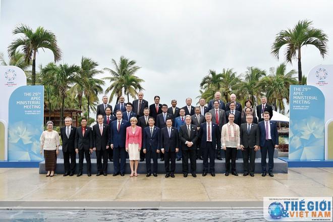 20 năm tham gia APEC: Từ tầm nhìn chiến lược đến những dấu ấn Việt Nam - Ảnh 1.