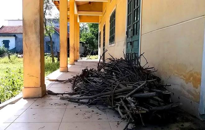 Trường học hàng trăm triệu đồng cho học sinh vùng khó khăn thành nơi… chứa củi, bò phóng uế - Ảnh 8.
