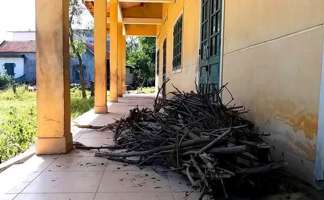 Trường học hàng trăm triệu đồng cho học sinh vùng khó khăn thành nơi… chứa củi, bò phóng uế