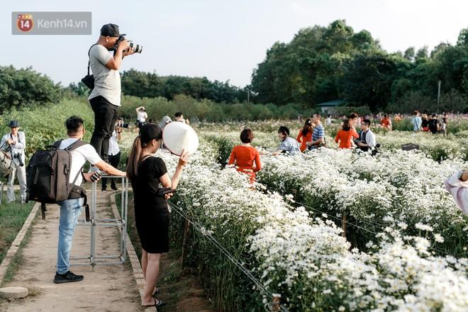 Vườn cúc hoạ mi ở Hà Nội thất thủ cuối tuần: 1 mét vuông có chục nhiếp ảnh gia và mẫu - Ảnh 8.