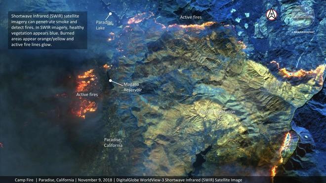 Quy mô khủng khiếp của thảm họa cháy rừng California nhìn từ vệ tinh - Ảnh 2.