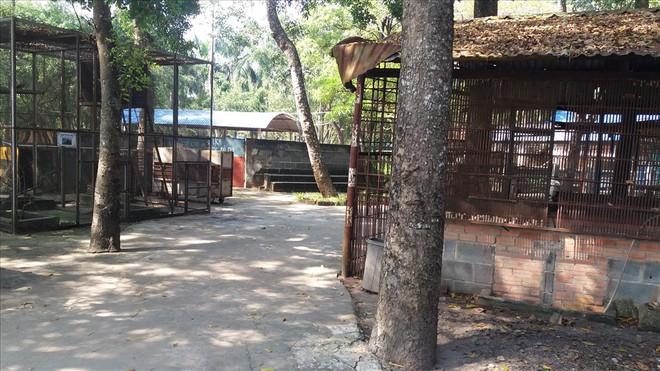 Cận cảnh thú nuôi bị coi là ngược đãi tại vườn thú Công viên nước Củ Chi - Ảnh 2.