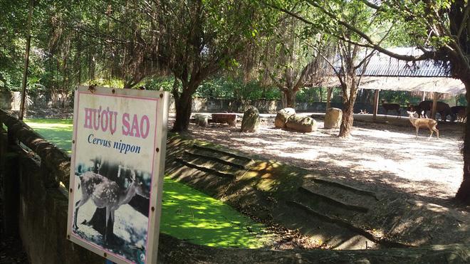 Cận cảnh thú nuôi bị coi là ngược đãi tại vườn thú Công viên nước Củ Chi - Ảnh 15.