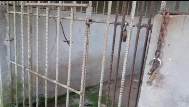 Cận cảnh thú nuôi bị coi là ngược đãi tại vườn thú Công viên nước Củ Chi - Ảnh 16.