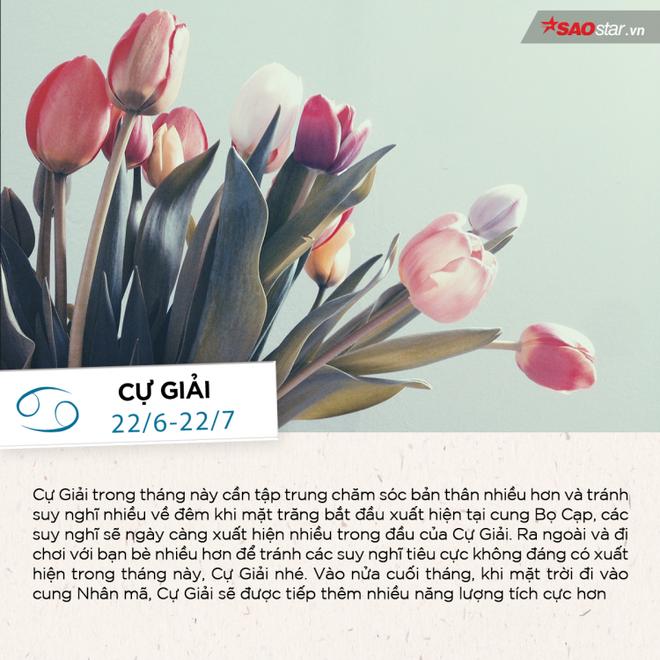 Tháng 11 của 12 chòm sao: Thiên Bình có nhiều mối quan hệ bất ngờ, Kim Ngưu đón cơ hội bứt phá - Ảnh 4.