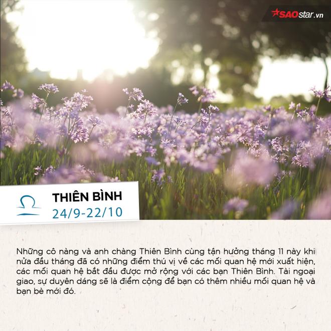 Tháng 11 của 12 chòm sao: Thiên Bình có nhiều mối quan hệ bất ngờ, Kim Ngưu đón cơ hội bứt phá - Ảnh 7.