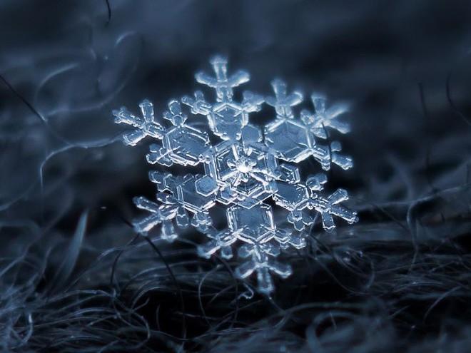 Câu hỏi dễ nhưng ít người đúng: Vì sao tuyết lại màu trắng?  - Ảnh 2.