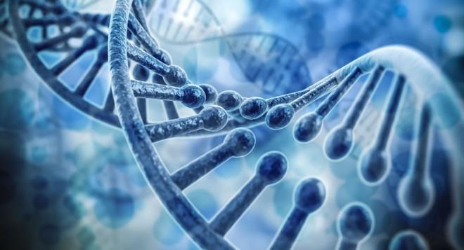 4 yếu tố nguy cơ gây ung thư dạ dày: Bạn cần khám sớm để phát hiện có mầm bệnh hay không - Ảnh 2.