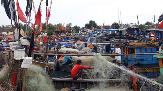 Lãnh đạo TP HCM dầm mưa tổng kiểm tra bến tàu, thuyền neo đậu trước bão số 9 - Ảnh 1.